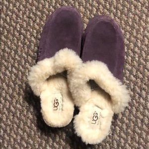 Plum colored suede ugg clogs.  Perfect condition.